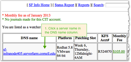 Click a server name in the DNS name column
