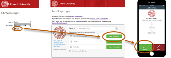 Log In Using Duo Push for Two-Step Login | IT@Cornell